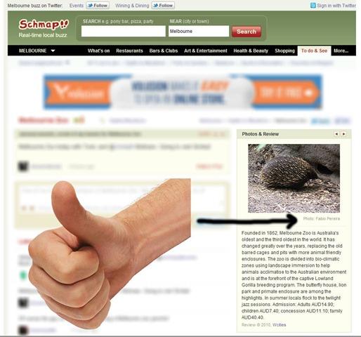melbourne-zoo-fabio-pereira-photo